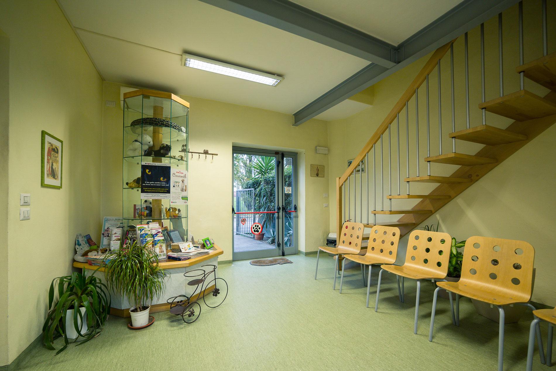 Sala di attesa - Clinica Veterinaria San Bartolo, Firenze